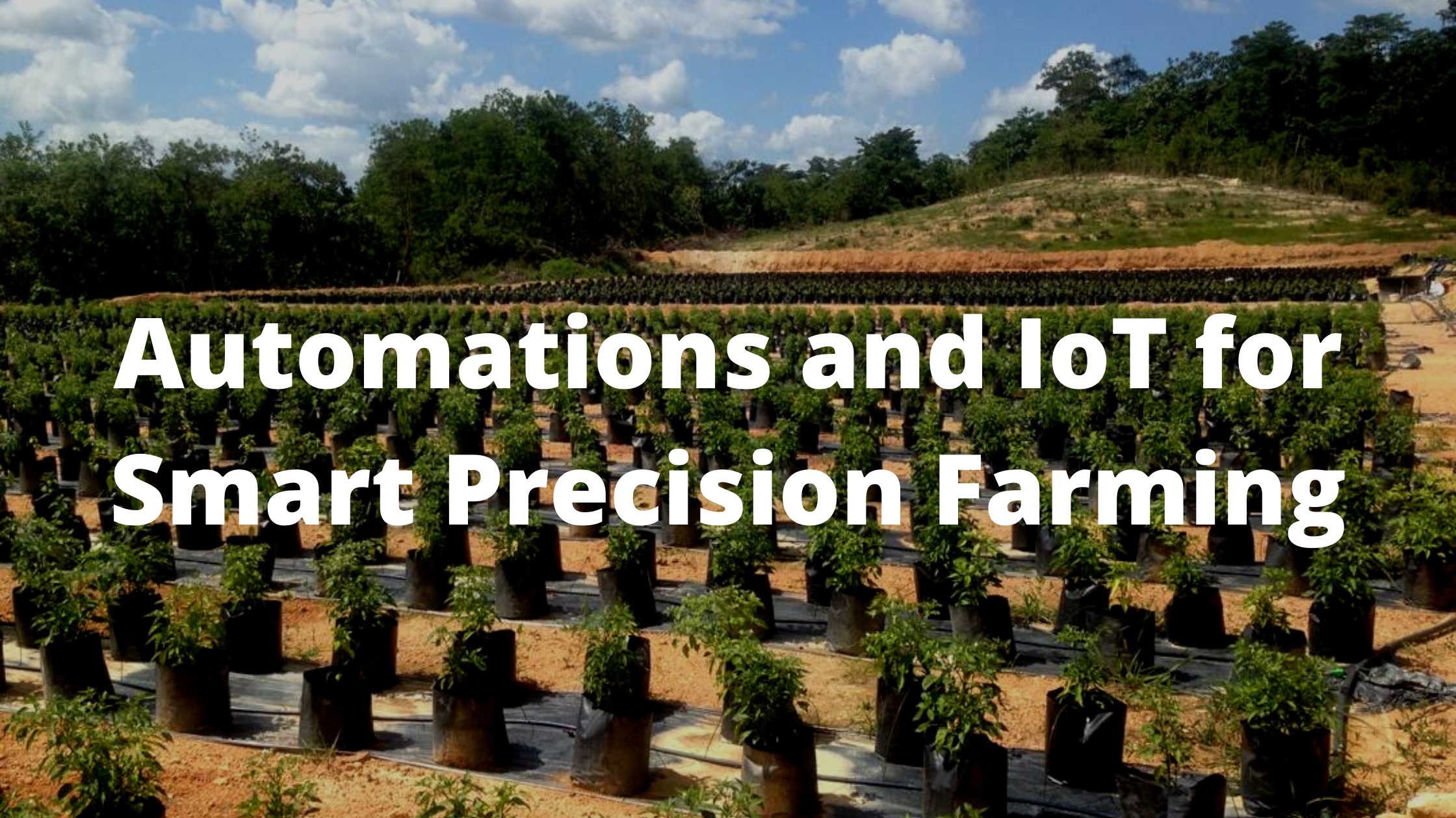 Automations-and-IoT-for-Smart-Precision-Farming-1